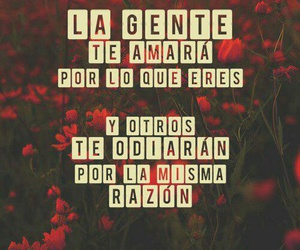 flores, frases, and fondo image