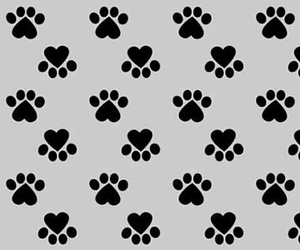 wallpaper, pattern, and dog image