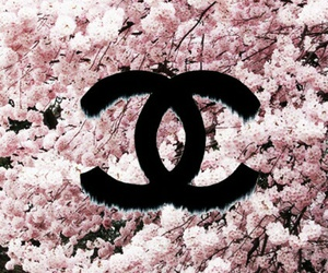 chanel, wallpaper, and flowers image