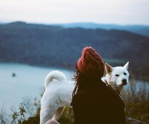 girl, dog, and nature image