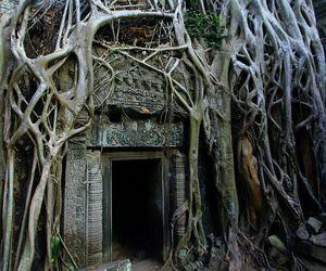 ancient, angkor, and Cambodia image
