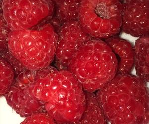 berries, tumblr, and rasperries image