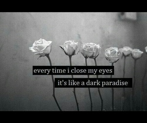 dark, rose, and paradise image
