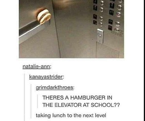 funny, tumblr, and lol image