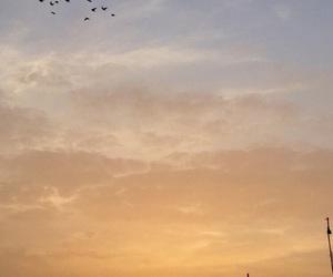 background, Beirut, and birds image