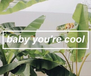 baby, cool, and green image