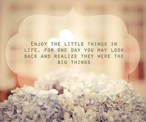 enjoy life, nice, and quote image