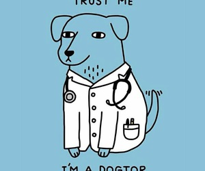 funny, dog, and doctor image