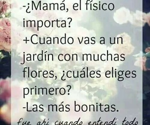 frases and truth image