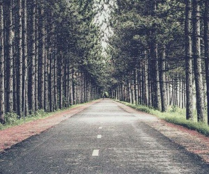 wallpaper, nature, and road image