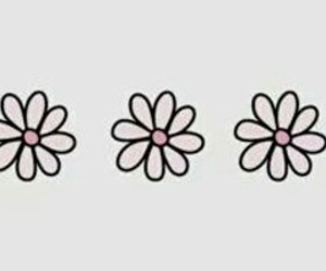flower, header, and layout image