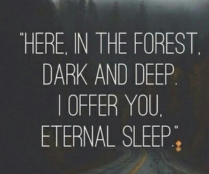 quotes, forest, and dark image