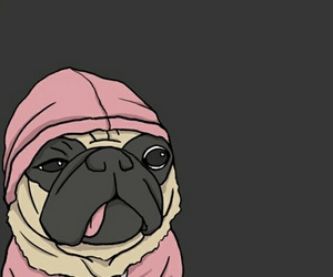 pink hoodie, dog wallpaper, and grey wallpaper image