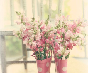 background, colors, and flowers image