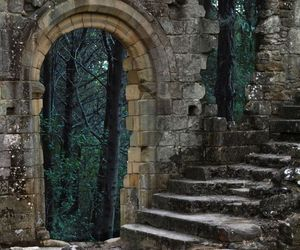 forest, ruin, and castle image