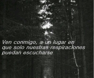 amor, blanco y negro, and frases image