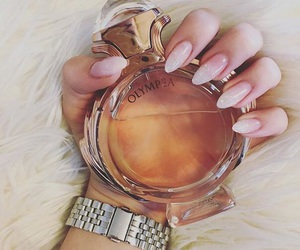 nails, perfume, and refinement image