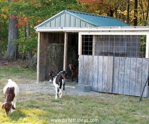 pallet barn, diy pallet barn, and pallet barn ideas image