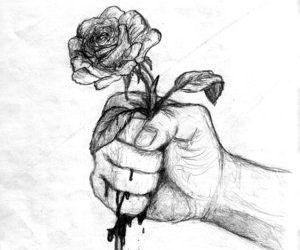 rose, drawing, and blood image
