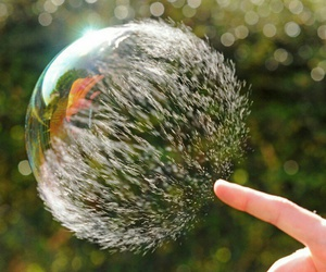 natural, photography, and bubble image