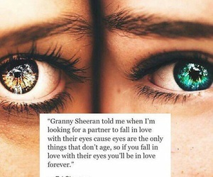 eyes, love, and ed sheeran image
