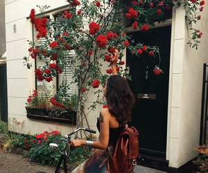bicycle, roses, and girl image