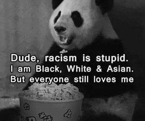 panda, black, and racism image