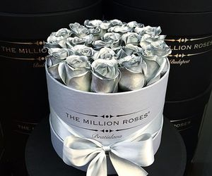 flowers, rose, and silver image