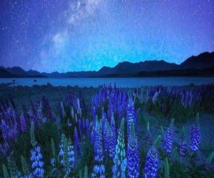 nature, stars, and mountains image