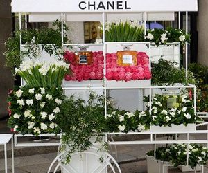 flowers, chanel, and white image