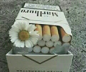 cigarettes and habbits image