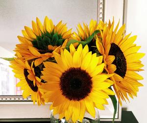 beautiful, flowers, and maki image