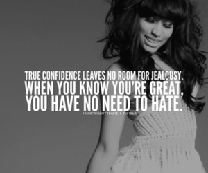 quote, confidence, and hate image