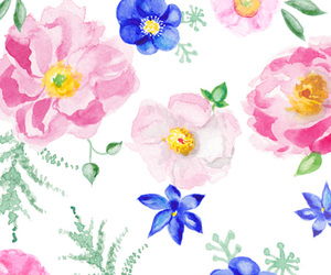 floral, illustration, and watercolor image
