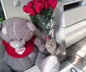 bear, rose, and valentine image