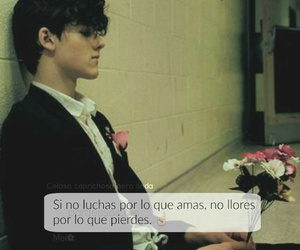 amor, cool, and frases image