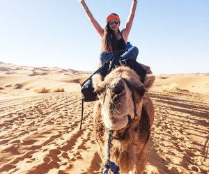 africa, camel, and desert image