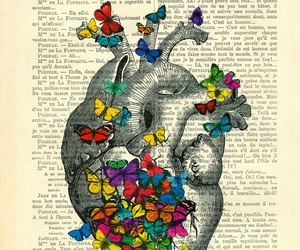 butterfly, colors, and heart image