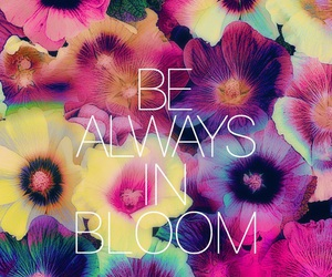 flowers, always, and quotes image