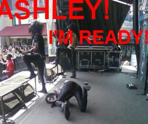 funny, ashley purdy, and 😂 image