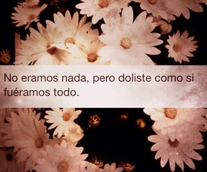 frases, love, and broke image
