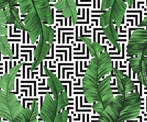 art, pattern, and tropical image