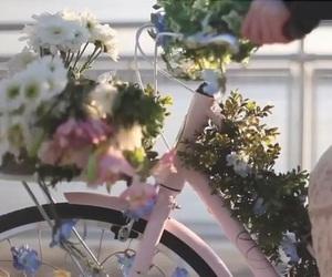 alternative, beautiful, and bike image