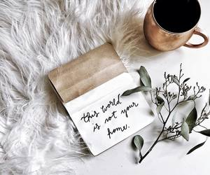 quotes, white, and coffee image