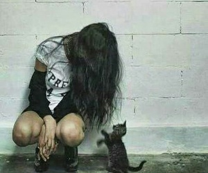 black, cat, and missyou image