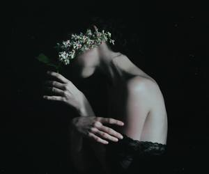 flowers, beauty, and dark image