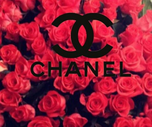 background, chanel, and channel image