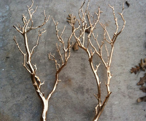 gold, diy, and branches image