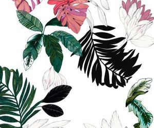 wallpaper, plants, and art image
