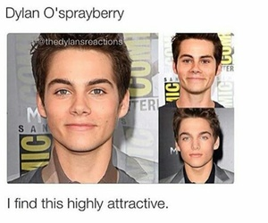 dylan o'brien, dylan sprayberry, and dylan image